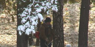 Коммунальщик косит траву зимой